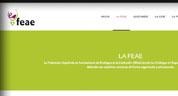 Enlace a la Federación Española de Asociaciones de Enólogos